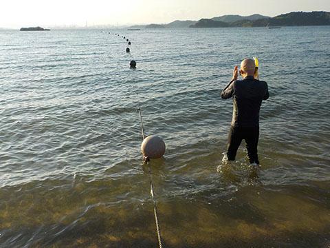 白石島の海